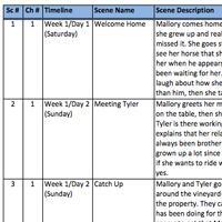SCENE OUTLINE SPREADSHEET A fan of J.K. Rowling's plotting process? Use this digital version to create your own outline! Includes columns for Scene Number, Chapter Number, Timeline, Scene Name, Scene Description, Main Plot and 3 Subplots.
