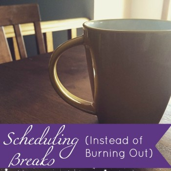 Blog: Scheduling Breaks (Instead of Burning Out) by Jamie Raintree | http://jamieraintree.com #entrepreneurs #creatives #happiness